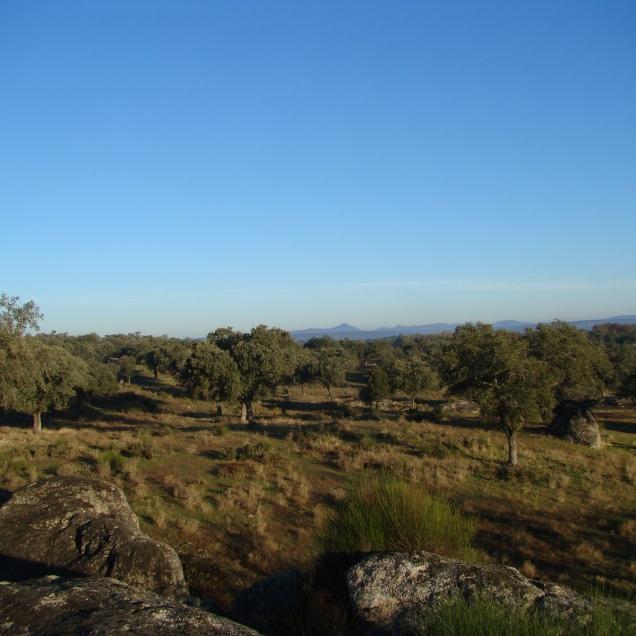 dolmen-del-lacara-96